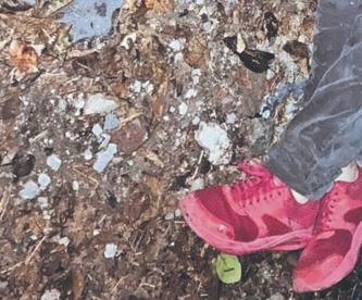 Hallan cadáver de un hombre con tres plomazos y con golpes en el pecho, en Morelos