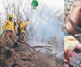 Controlan en 90% incendio forestal en el Tepozteco, Semarnat pide recoger animales heridos