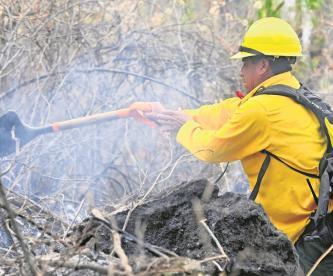 Incendio de Tepoztlán cerró con más de 350 hectáreas de bosque de pino y encino dañados