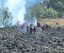 Probosque Incendios Flora Fauna Toluca