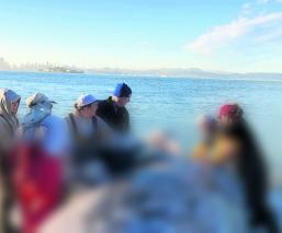Encuentran cadáver ballena plástico estómago Filipinas