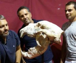 Hallan restos Oso gigante Argentina