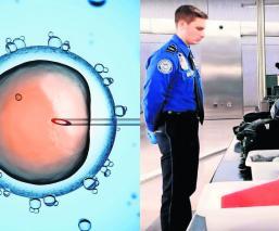 Detienen hombre contrabandeaba embriones humanos