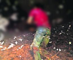 Hallan cadáver en poza Morelos Sin huellas de violencia