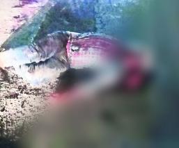 asesinan vaquero edomex estado de mexico