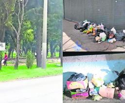Disminuye basura hasta el 90 por ciento gracias a multas en Toluca