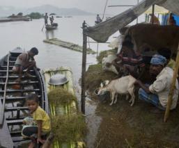 Inundaciones torrenciales 130 muertos países