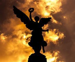 angel material cdmx