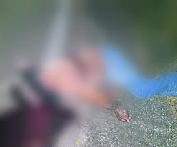 Carretera Interlagos muerto envuelto manos atadas