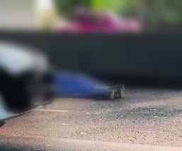 militar muerto moto chapultepec