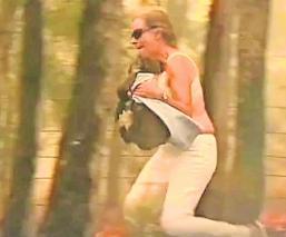 Mujer rescata koala quemado