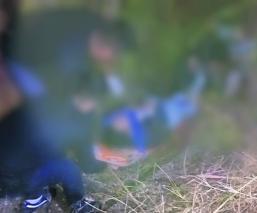 Motociclista pierde el control y muere tras caer hacia una barranca, en Morelos