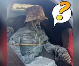 esqueleto automovilista carril alta ocupación