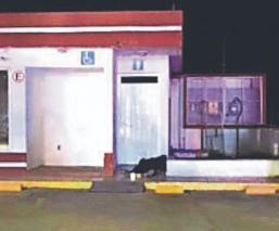 Motosicarios acribillan a policía auxiliar mientras vigilaba gasolinera, en Edomex