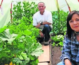 Pareja instala huerto en su casa para sobrevivir al desempleo, en Toluca