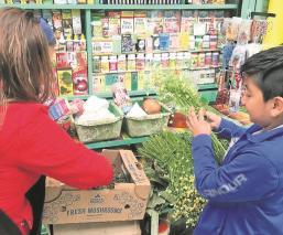Ni las moscas se parapor puestos de yerberos en mercados de Toluca, por Covid 19
