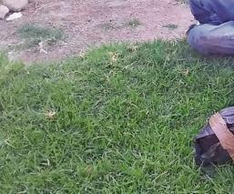 Embolsan a tres hombres para llevar y los avientan en Chalco, Estado de México