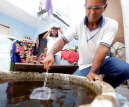 Cerco sanitario no frena plaga de mosquitos y dengue en el Estado de México