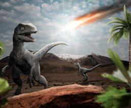 ¿Qué les pasó a los temibles y asombrosos dinosaurios antes de morir? Tienes que saber