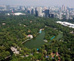 Proyecto de restauración no pondrá en riesgo el Bosque de Chapultepec, afirma Sheinbaum