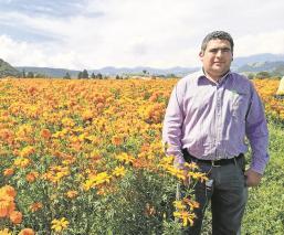 Floricultores cultivaron hortalizas y dejan en paz al cempasúchil por Covid-19, en Edomex