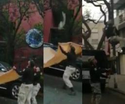 Autoridades rescatan a un gato de un árbol de aproximadamente 15 metros de alto en CDMX