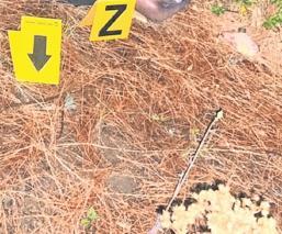 Hallan cadáver de hombre con tiro de gracia y huellas de tortura en La Marquesa