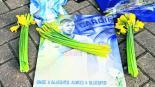 Nantes Francia pago traspaso Emiliano Sala