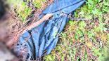 Huesos humanos carcomidos barranca Huitzilac