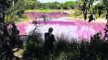 Australia Melbourne Lago Rosa Salinidad