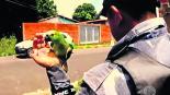 Arrestan a Papagaio do Tráfico el narco cotorro de Brasil