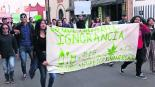 marcha legalización marihuana jovenes estado de méxico toluca