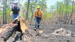 brigadistas sin contrato sueldos bajos sin seguro incendios oaxaca