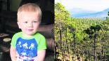 Rescatan a niño perdido en bosque