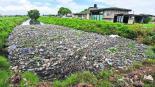 rio lerma agua contaminada saneamiento corrosiva peligro vecinos temen por su salud enfermedades Lerma Edomex México