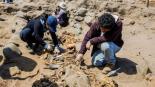 Encuentran restos de 227 niños sacrificados en rituales a dioses