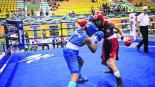 boxeadora morelense VII Copa Carlos Velázquez