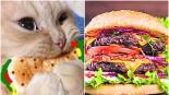 profeco advierte presencia soya grasa pellejos piel carne para hamburguesa publicidad engañosa
