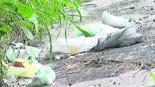 Cañón de Lobos basura Morelos