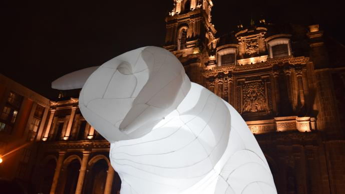 El FILUX inundó las calles de la ciudad con el arte de la luz. >>>Fotos: Antonieta Ramos<<<