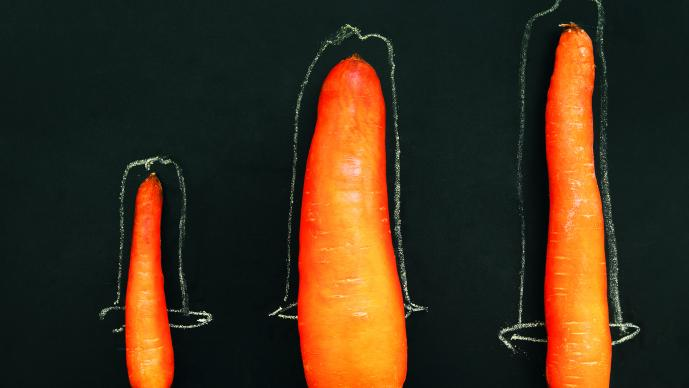 la circuncisión ayuda a la erección