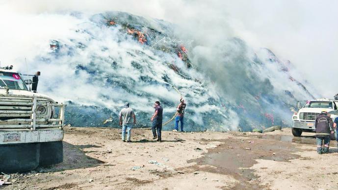 Extinguen brigadas incendio forestal en Tepoztlán