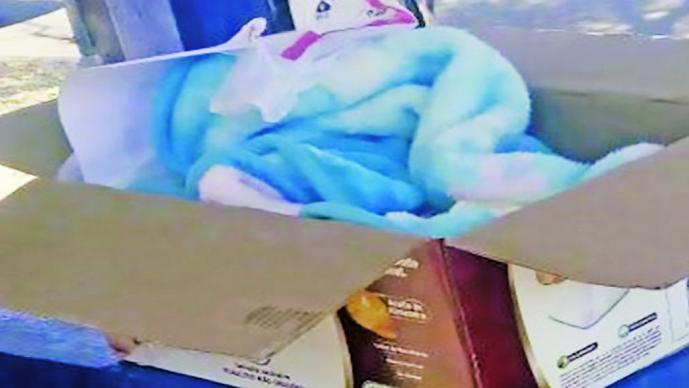 Abandonan a bebé en caja de cartón en Naucalpan, EdoMex