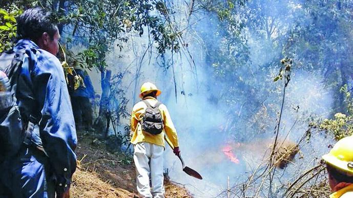 En lo que va del año Puebla registra 149 incendios forestales: Conafor