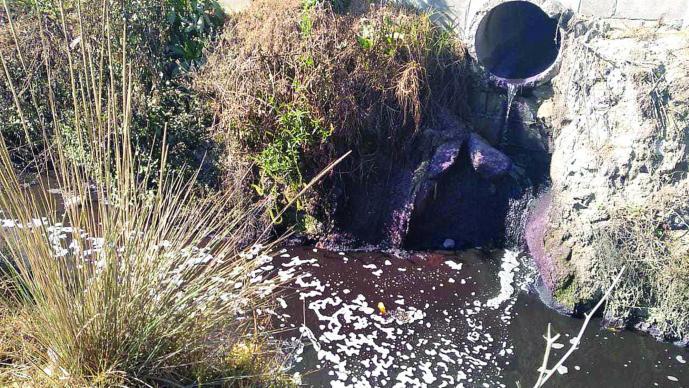 Canal Atenco Desechos Industriales