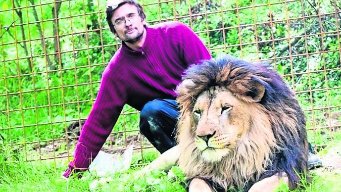 Hombre mascota leones devoran