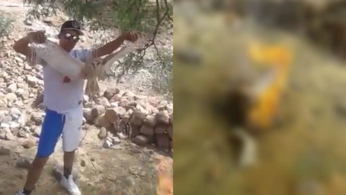 Indigna video de hombres quemando una lechuza viva por 'bruja'