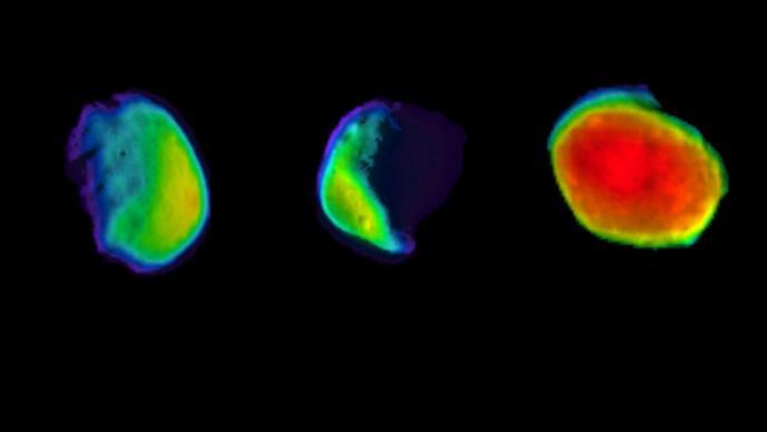 Revelan imágenes impresionantes de la Luna de Marte