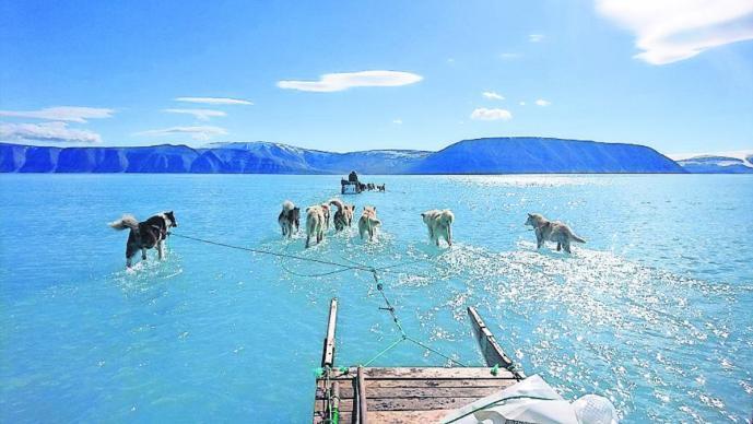 foto trineo sobre agua alerta cambio climático groenlandia