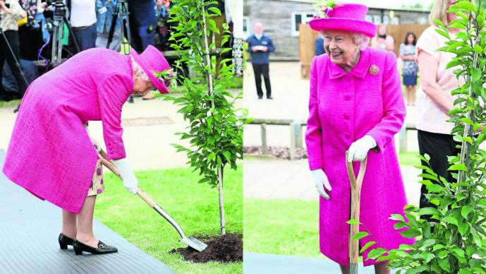 Reina Isabel II planta árbol